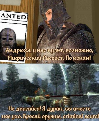 Oblivion-The-Elder-Scrolls-фэндомы-улицы-разбитых-фонарей-4665300.jpeg