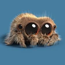 spider.jpg.301631df03c0c659024208065dc48286.jpg